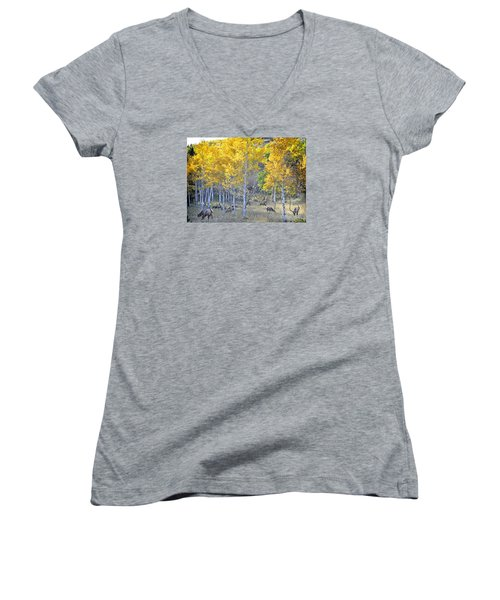 Women's V-Neck T-Shirt (Junior Cut) featuring the photograph Elk In Rmnp Colorado by Nava Thompson
