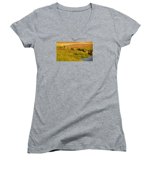 Elk In The Wild Flowers Women's V-Neck T-Shirt (Junior Cut) by Cathy Donohoue