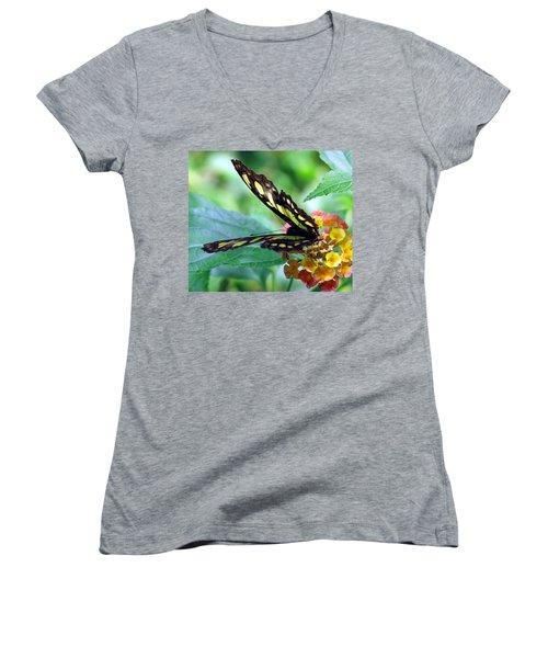 Elusive Butterfly Women's V-Neck T-Shirt (Junior Cut) by Betty Buller Whitehead