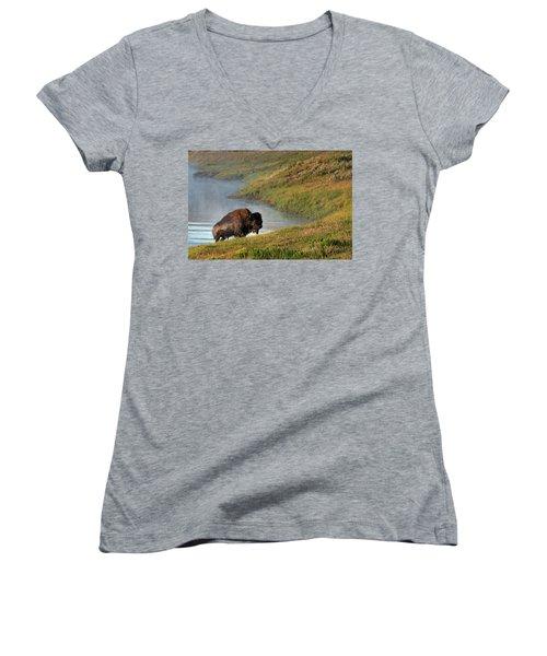 Emergence  Women's V-Neck T-Shirt
