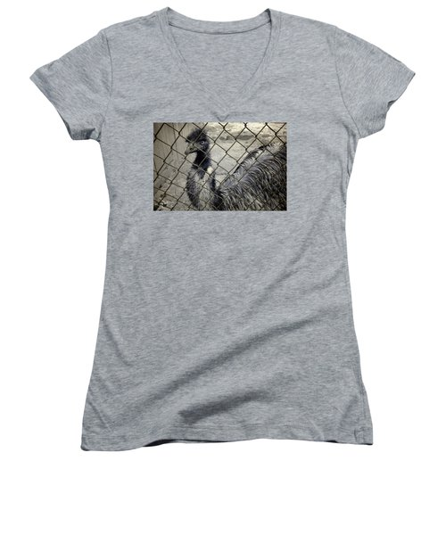 Emu At The Zoo Women's V-Neck T-Shirt (Junior Cut) by Luke Moore