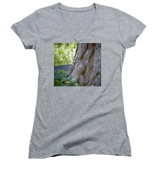 Enjoying The View Women's V-Neck T-Shirt