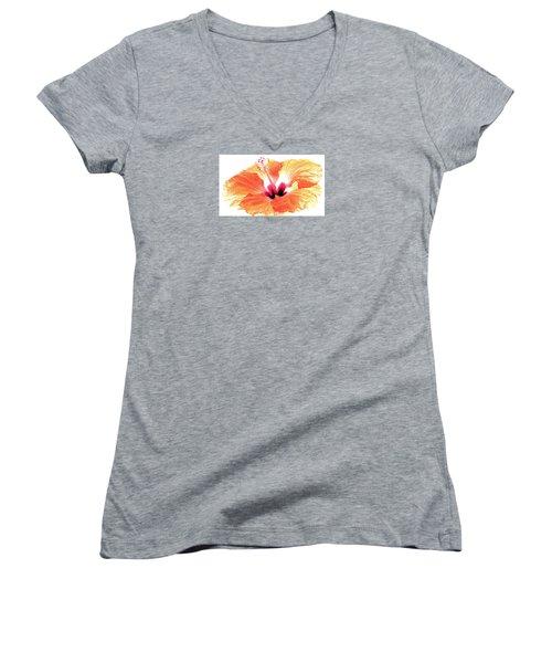 Enlightened Women's V-Neck T-Shirt (Junior Cut) by Angela Davies
