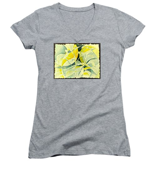 Entering A New Realm Women's V-Neck T-Shirt (Junior Cut) by Carolyn Rosenberger