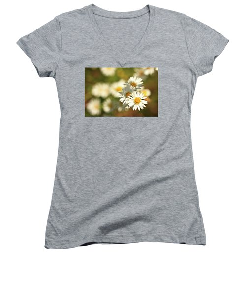 Erigeron Annuus Daisy Like Wildflower Women's V-Neck (Athletic Fit)