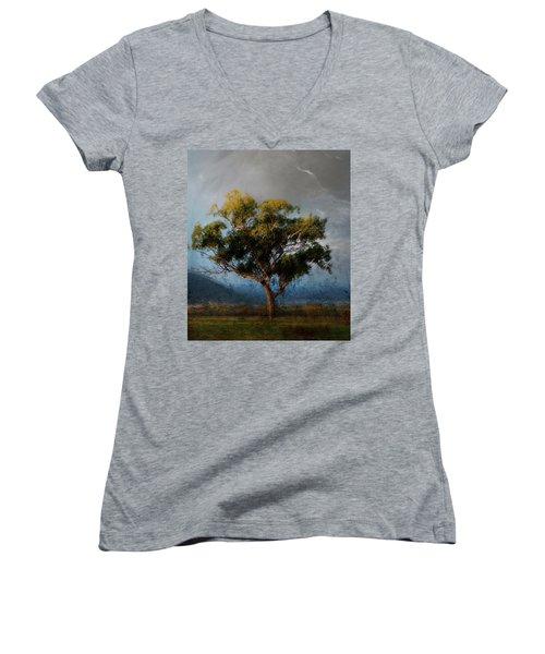 Eucalyptus Women's V-Neck T-Shirt