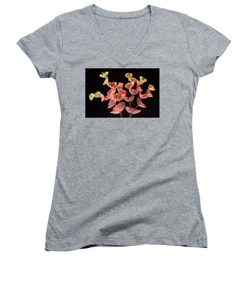Euphorbia Women's V-Neck