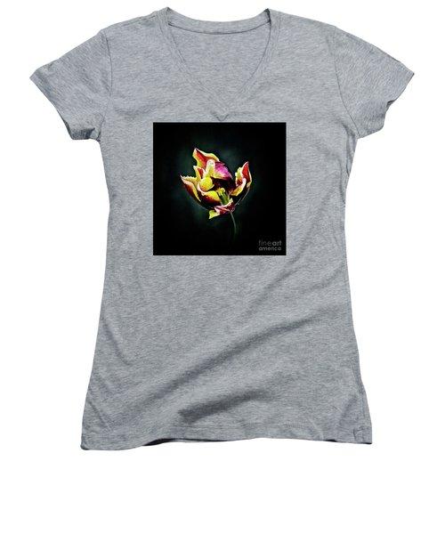 Evanescent Women's V-Neck T-Shirt