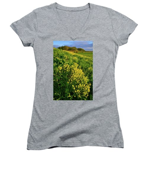 Evening At Glacial Park In Mchenry County Illinois Women's V-Neck (Athletic Fit)