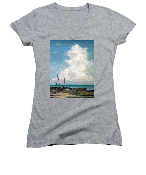 Evening Cloud Women's V-Neck (Athletic Fit)