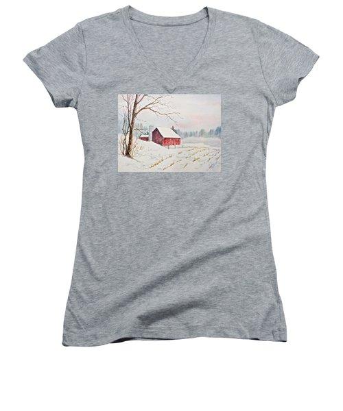 Evening Hush Women's V-Neck T-Shirt