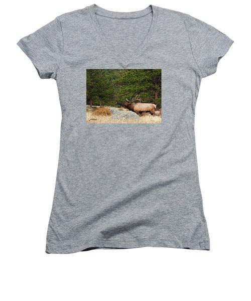 Evening Song Women's V-Neck T-Shirt