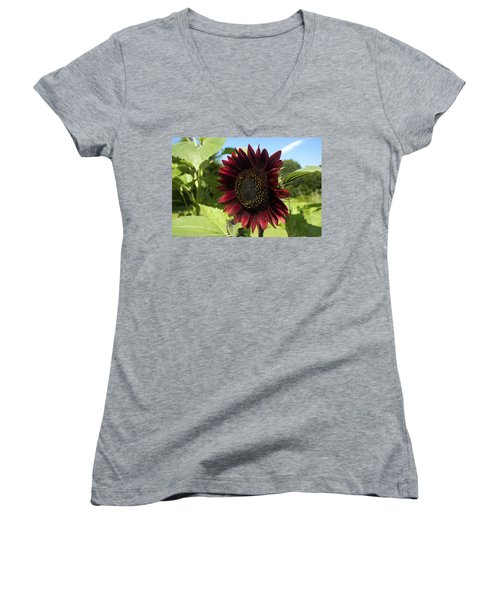 Evening Sun Sunflower #1 Women's V-Neck (Athletic Fit)