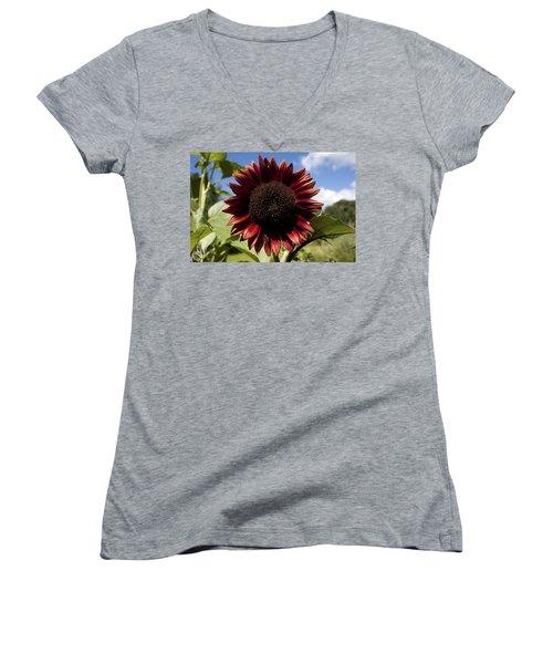 Women's V-Neck T-Shirt (Junior Cut) featuring the photograph Evening Sun Sunflower #2 by Jeff Severson