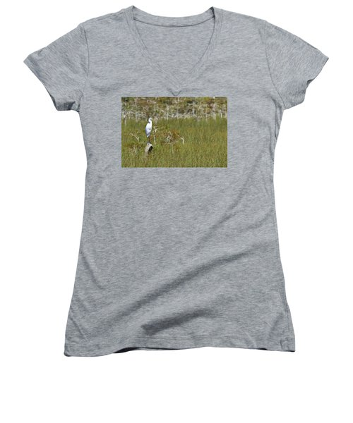 Everglades 451 Women's V-Neck