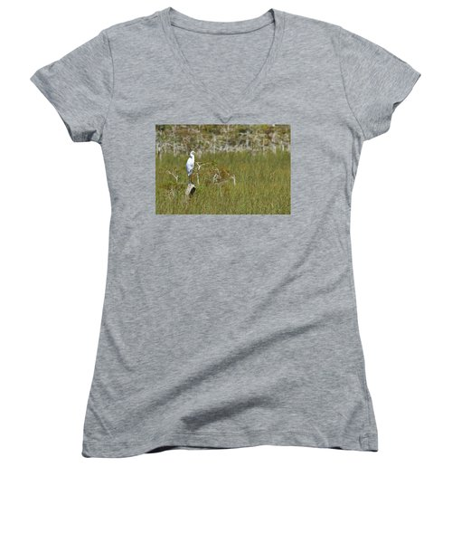 Everglades 451 Women's V-Neck