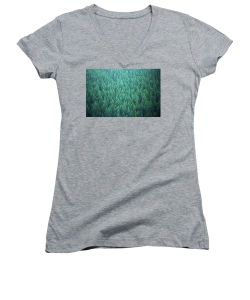 Women's V-Neck T-Shirt (Junior Cut) featuring the photograph Evergreen by Laurie Stewart