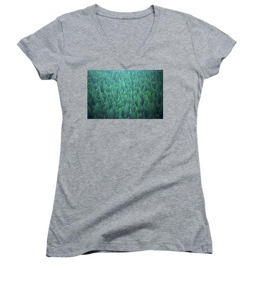 Evergreen Women's V-Neck T-Shirt