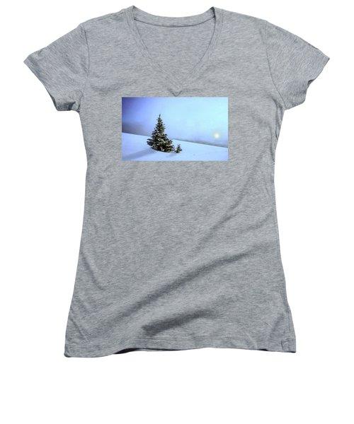 Women's V-Neck T-Shirt (Junior Cut) featuring the painting Evergreen Offspring P D P by David Dehner