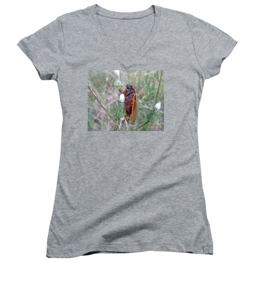Every Thirteen Years  Women's V-Neck T-Shirt (Junior Cut) by Donna Brown
