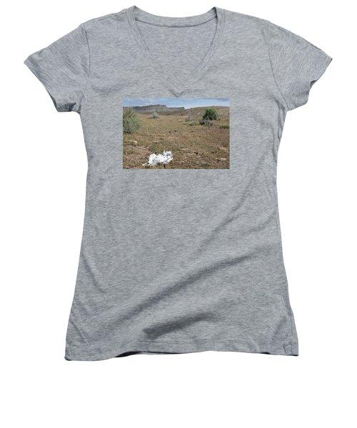 Women's V-Neck T-Shirt (Junior Cut) featuring the photograph Expired by Jenessa Rahn