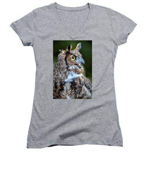 Expressive Women's V-Neck T-Shirt