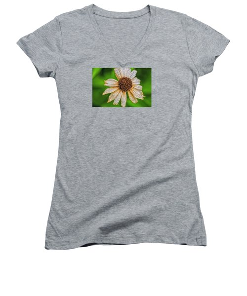 Women's V-Neck T-Shirt (Junior Cut) featuring the photograph Faded Cone Flower by Tom Singleton