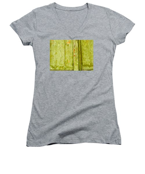 Women's V-Neck T-Shirt (Junior Cut) featuring the photograph Fading Old Paint by John Williams