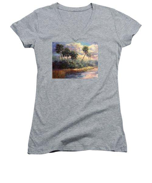Fairchild Gardens Women's V-Neck T-Shirt (Junior Cut) by Laurie Hein