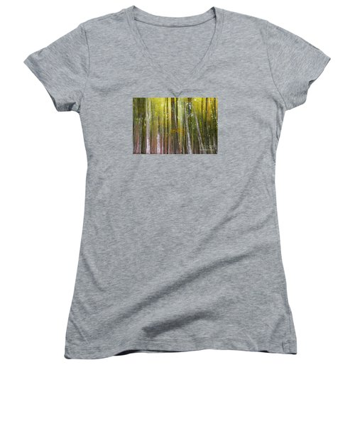 Women's V-Neck T-Shirt (Junior Cut) featuring the photograph Fairy Forest I by Yuri Santin
