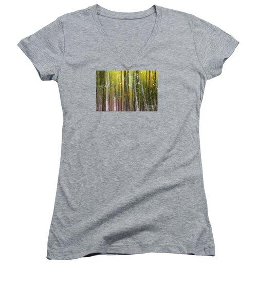 Fairy Forest I Women's V-Neck T-Shirt