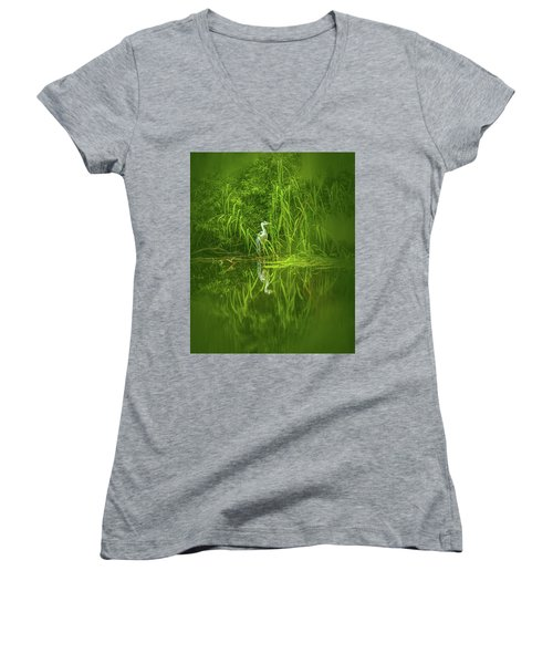 Fairy Tale Heron #g5 Women's V-Neck
