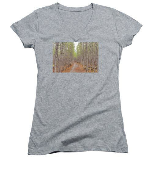 Fall Aspen Trail  Women's V-Neck T-Shirt