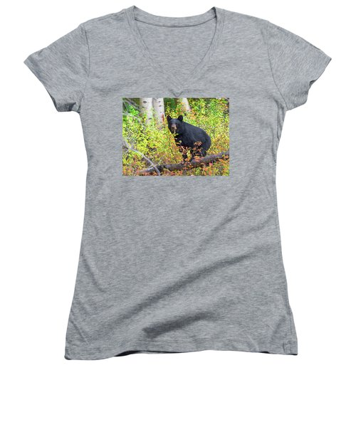 Fall Bear Women's V-Neck T-Shirt (Junior Cut) by Scott Warner