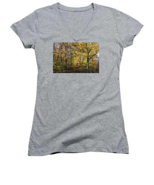 Fall Colors Of Rock Creek Park Women's V-Neck