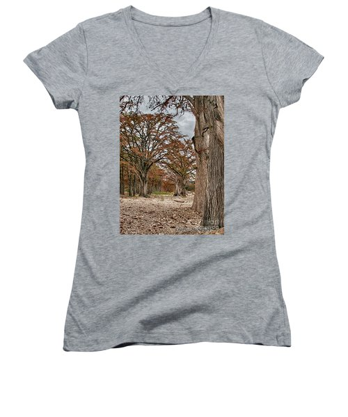 Fall In Texas  Women's V-Neck (Athletic Fit)