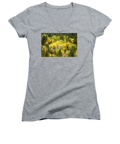 Fall In The Sierras Women's V-Neck (Athletic Fit)