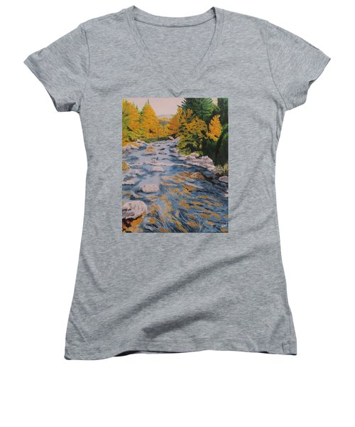 Women's V-Neck T-Shirt (Junior Cut) featuring the painting Fall Is Coming by Hilda and Jose Garrancho