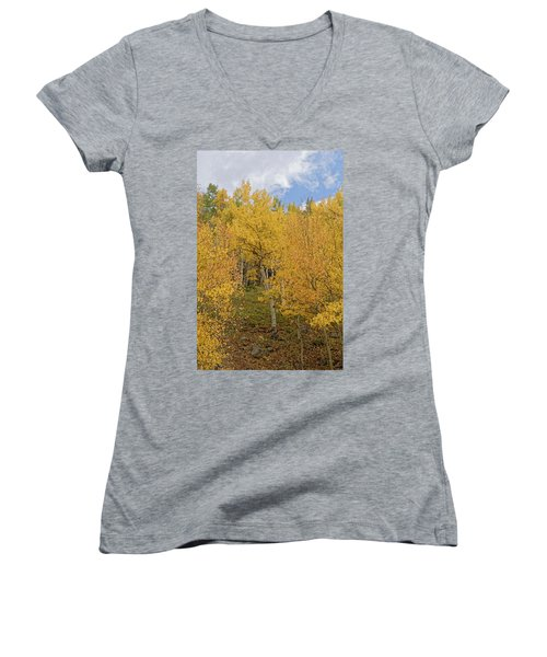 Fall Leaves Women's V-Neck (Athletic Fit)