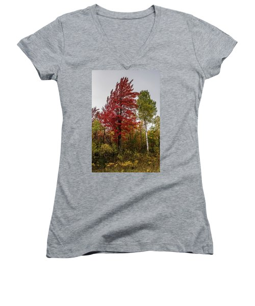 Women's V-Neck T-Shirt (Junior Cut) featuring the photograph Fall Maple by Paul Freidlund