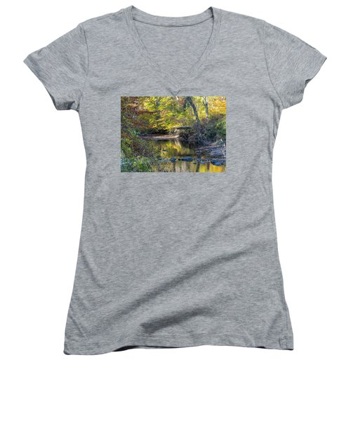 Fall Morning Women's V-Neck