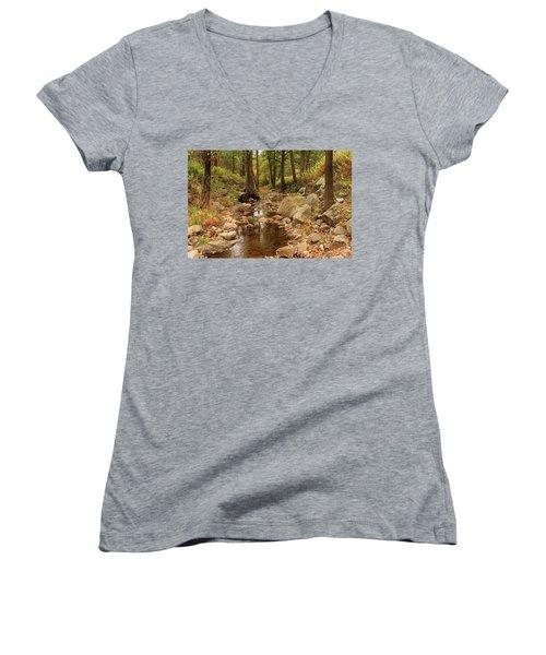 Fall Stream And Rocks Women's V-Neck T-Shirt
