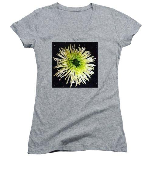 Fallen Women's V-Neck T-Shirt