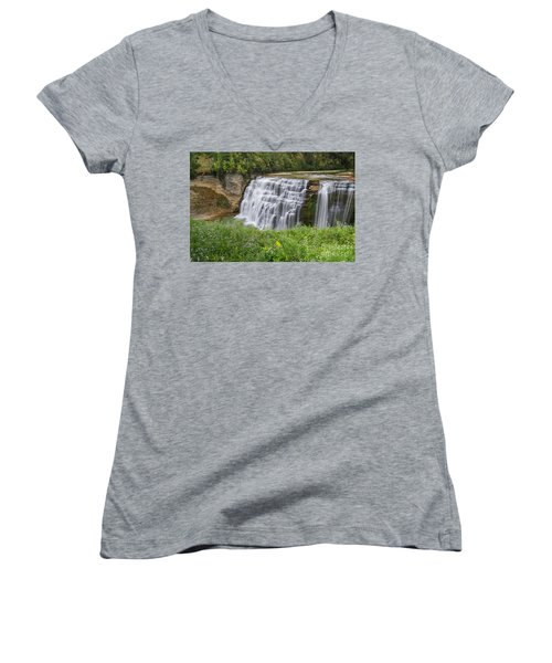 Autumn Flower Of Letchworth Middle Falls Women's V-Neck (Athletic Fit)