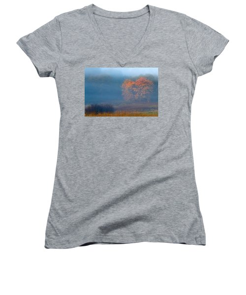Falltime In The Meadow Women's V-Neck T-Shirt (Junior Cut) by Scott Holmes