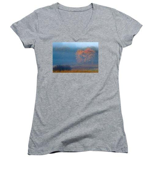 Falltime In The Meadow Women's V-Neck T-Shirt