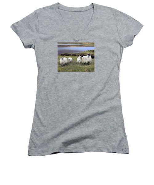 Family Of Sheep Women's V-Neck T-Shirt