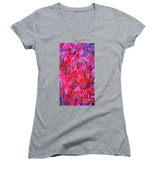 Women's V-Neck T-Shirt (Junior Cut) featuring the photograph Fancy Pants by Roberta Byram