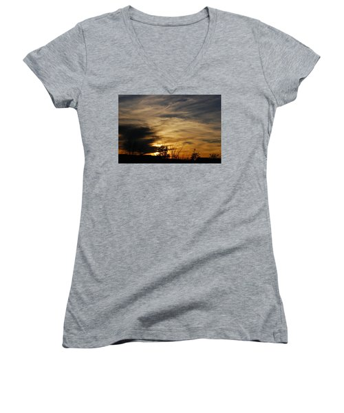 Fantastic Sunet Women's V-Neck T-Shirt