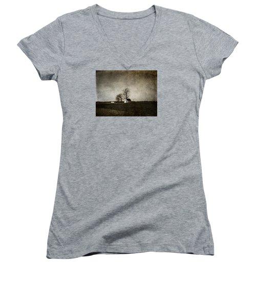 Farm Women's V-Neck T-Shirt (Junior Cut) by Cynthia Lassiter